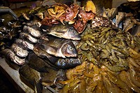 Close_up of fish and lobsters in a fish market, Xochimilco, Mexico