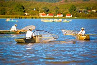 Fishermen fishing in a lake, Lake Patzcuaro, Patzcuaro, Michoacan State, Mexico