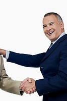 Businessman shaking hands with another businessman
