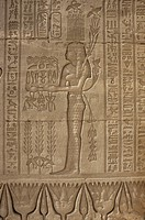 Relief carving of offerings being made, Temple of Hathor, Dendera, Egypt, North Africa, Africa