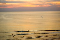 High angle view of tourists swimming in the sea, Cote des Basques, Biarritz, France