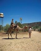 Tourists camel riding, Frontier Camel Farm, Alice Springs area, Northern Territory, Australia, Pacific