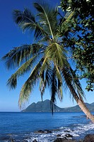Morne Larcher, Baie de la Chery Chery Bay, Martinique, West Indies, Caribbean, Central America