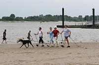 Four middle_aged women in summer sportswear on Elbstrand Nordic walking. A large black dog accompanies them