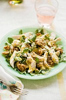 Chicken, Walnut and Watercress Salad