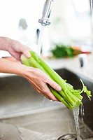 Close up of woman washing celery