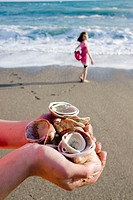 Seashells handfull