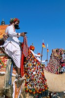 Camel adorned with colourful tassel and bridles, with camelier, Bikaner Desert Festival, Rajasthan state, India, Asia
