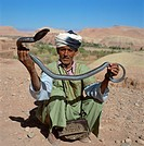 Snake charmer, Atlas mountains, Morocco, North Africa, Africa