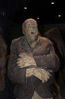 The Mummy Museum Museo de las Momias in Guanajuato, a World Heritage Site, Guanajuato, Guanajuato State, Mexico, North America