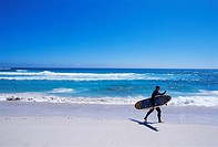 Surfer walking with his board on Kommetjie beach, Cape Town, South Africa, Africa
