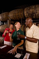 Mature couple with a tour guide at a winery