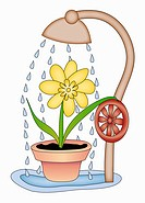 Flower taking a shower