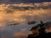 Foggy morning at Koli national park
