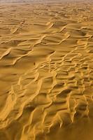 Dunes, Namib desert, Swakopmund, Namibia