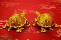 Still life of a pair of gold tortoise figurines