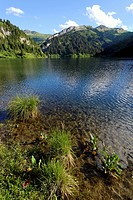 Lake Saint Guérin, Beaufortain, Alpes, Alps (thumbnail)