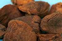 The kola nut contains caffeine and is chewed in many West African cultures. It was originally used to make cola soft drinks, though today most of thes...