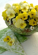 bouquet of yellow violas