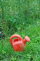 Plastic watering can on grass