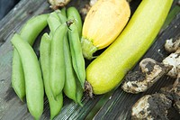 Broad beans, squash, and Jerusalem artichokes