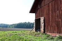 Barn in field, close-up