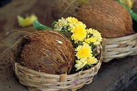 Coconut and chrysanthemums in basket