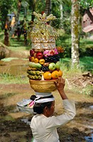 Woman carrying food offerings on her head, celebrating festival of Kuningan, Ubud village, island of Bali, Indonesia, Southeast Asia, Asia