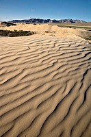 Windblown ripples in sand dunes, north central Mongolia