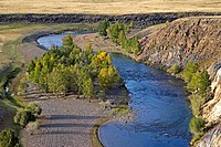 Mongolian landscape in autumn with river and larch trees turning yellow, north-central Mongolia