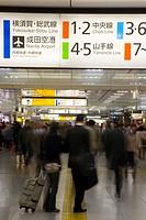 Tokyo Central Train Station, Tokyo, Honshu, Japan, Asia
