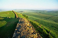 Ruins of a stone wall in a field, Hadrian´s Wall, Northumbria, England