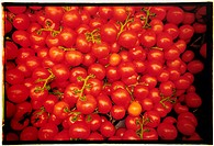Tomater , Close_Up Of Tomatoes, Full Frame