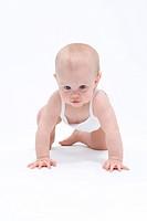 Baby kryper, fotograferad mot vit bakgrund Baby Girl 0_18 Crawling, Studio Shot