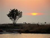 45X60 FOTO: Claes Grundsten COPYRIGHT BILDHUSET Sunset By River