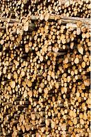 Gamla Höstörar, Wood Logs, Full Frame