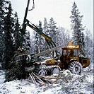 Skogsarbete, Crane Lifting Log Of Wood In Winter