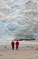 Pia Glacier, Beagle Channel, Darwin National Park, Tierra del Fuego, Patagonia, Chile, South America