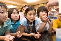 Elementary Students Watching Experiment