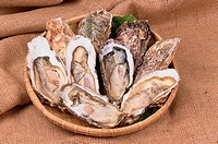Plate Of Halved Oysters (thumbnail)