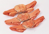 Row Of King Crabs (thumbnail)