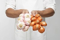Chef holding bunch of garlic and shallot onions mid section