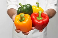 Chef holding selection of bell peppers mid section