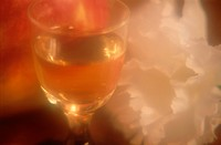Glass Of Wine Near Flower