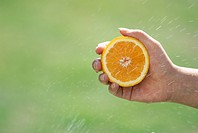 A Hand With An Orange, And A Spray