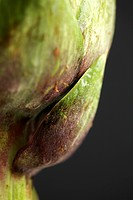 Artichoke extreme close-up (thumbnail)
