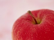 Apple (thumbnail)