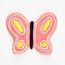 Butterfly sugar cookie with decorative icing