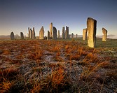 Callanish Callanais Stone Circle dating from Neolithic period between 3000 and 1500 BC, at dawn, Isle of Lewis, Outer Hebrides, Scotland, United Kingd...