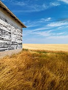 Exterior of weathered abandoned building with peeling paint in grasslands